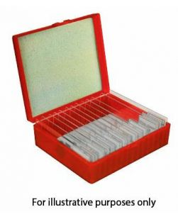 Prepared Slides, Basic zoology and histology, set of 35 slides