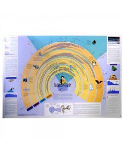 Sound Spectrum chart, 97 x 66cm