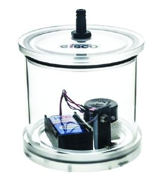 Bell jar with battery buzzer