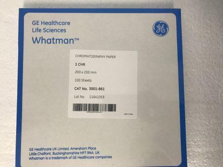 Chromatography paper, No. 1, 20 x 20cm, Whatman, pkt/100