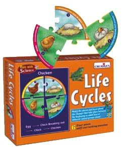 Life Cycles puzzle