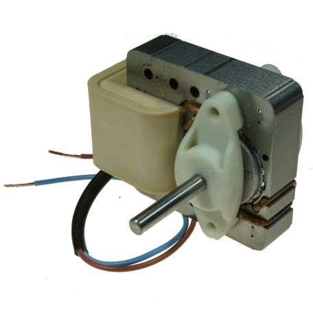 Motor, small, induction